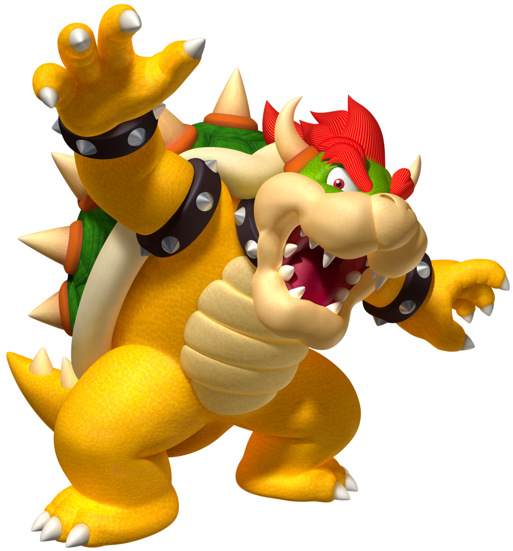 Bowser Net Worth